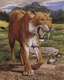 картинка саблезубый тигр